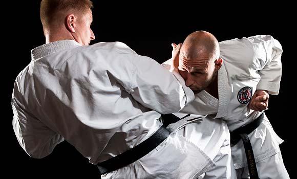 Seirenkai karatea ja itsepuolustusta